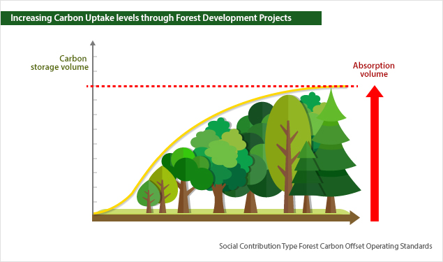 Increasing Carbon Uptake levels (Carbon Storage) through Forest Development Projects.